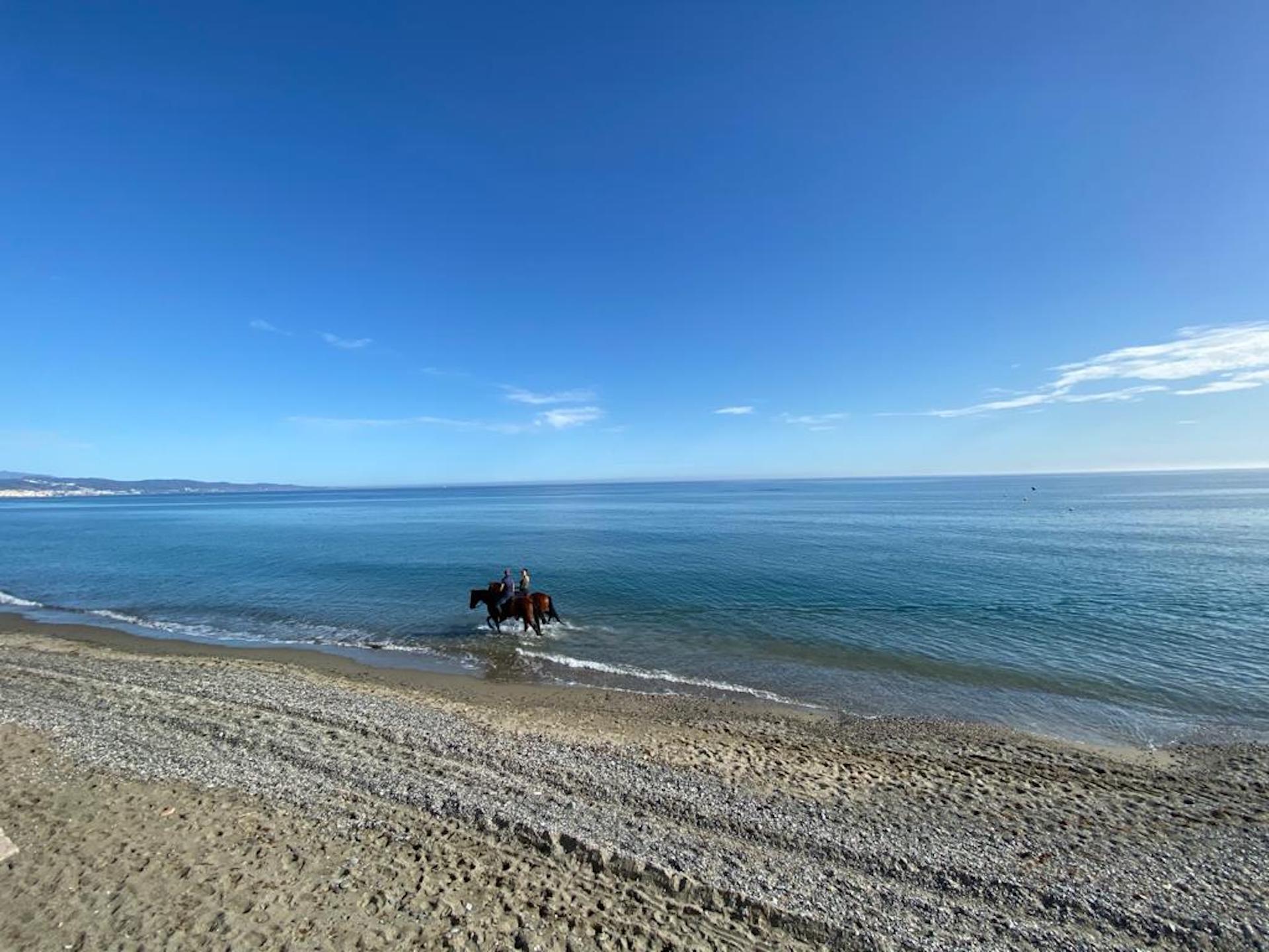 Beach horse promenade in Marbella beach