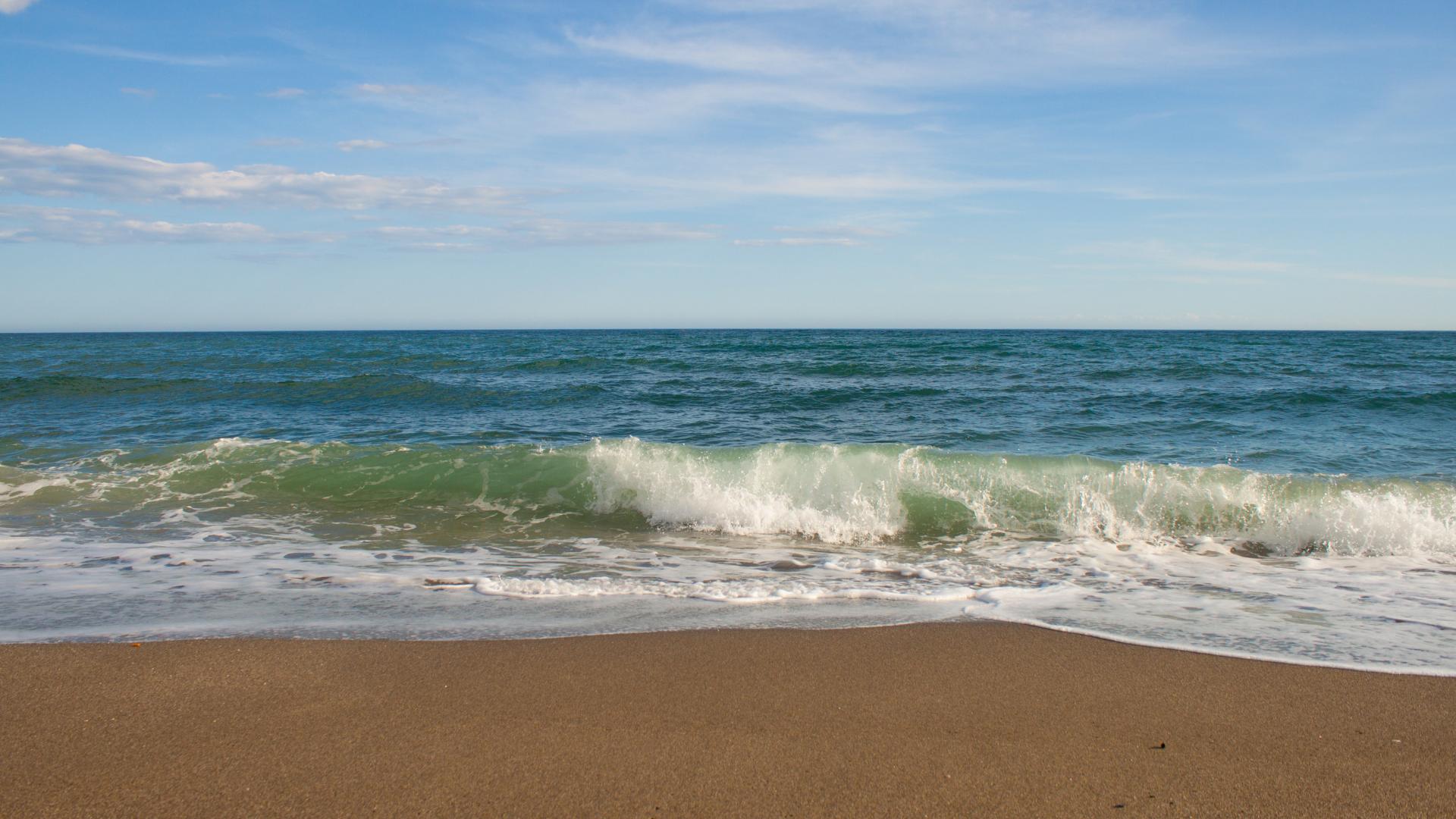 playa de Marbella en España