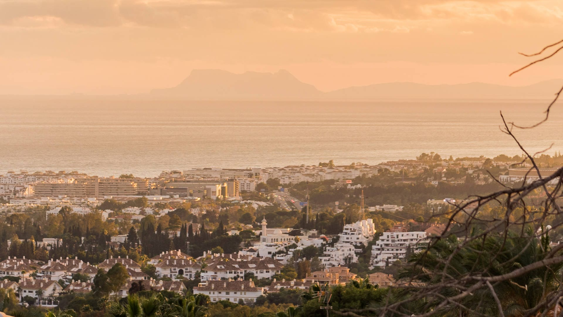 Bespoke buying service in Marbella